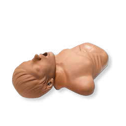 ZOLL AED Demo Manikin